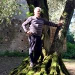 persona_albero